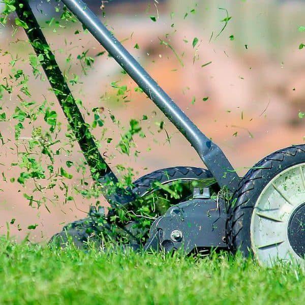 Limpeza e Jardinagem